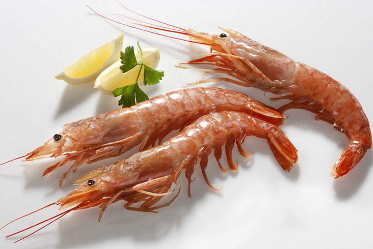 Red Shrimp (Pleoticus muelleri)