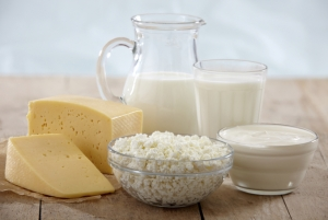 milk and dairy products exporters India